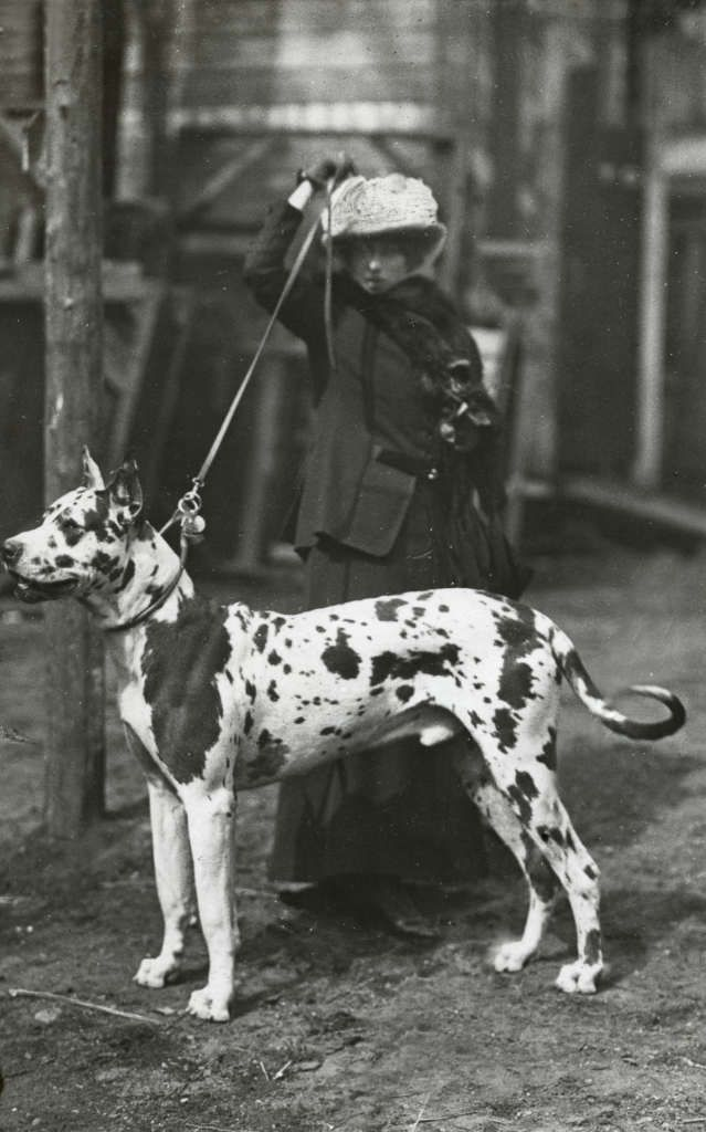 Happy Tbt Today S Dame Dame Is A Dog Show Handler Circa 1913