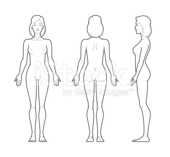 Female Body Outline Google Search