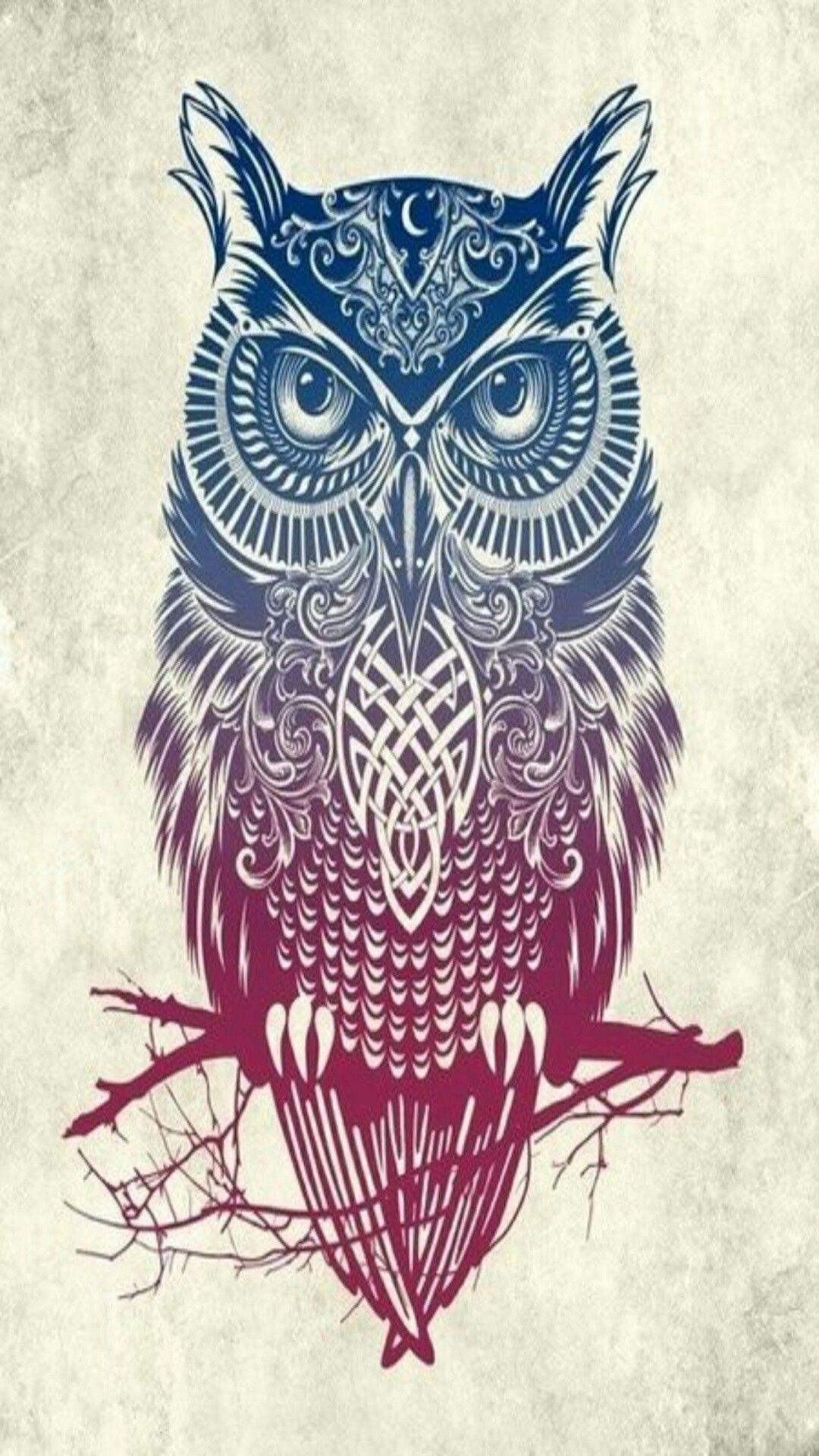 Amazing Wallpaper Home Screen Owl - e706ecd275f7c68c5f4558889e9da27c  Pictures_74169.jpg