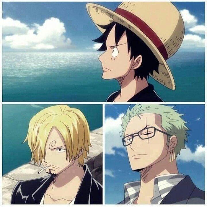 Luffy Sanji Zoro One Piece Anime One Piece Luffy One Piece Ace