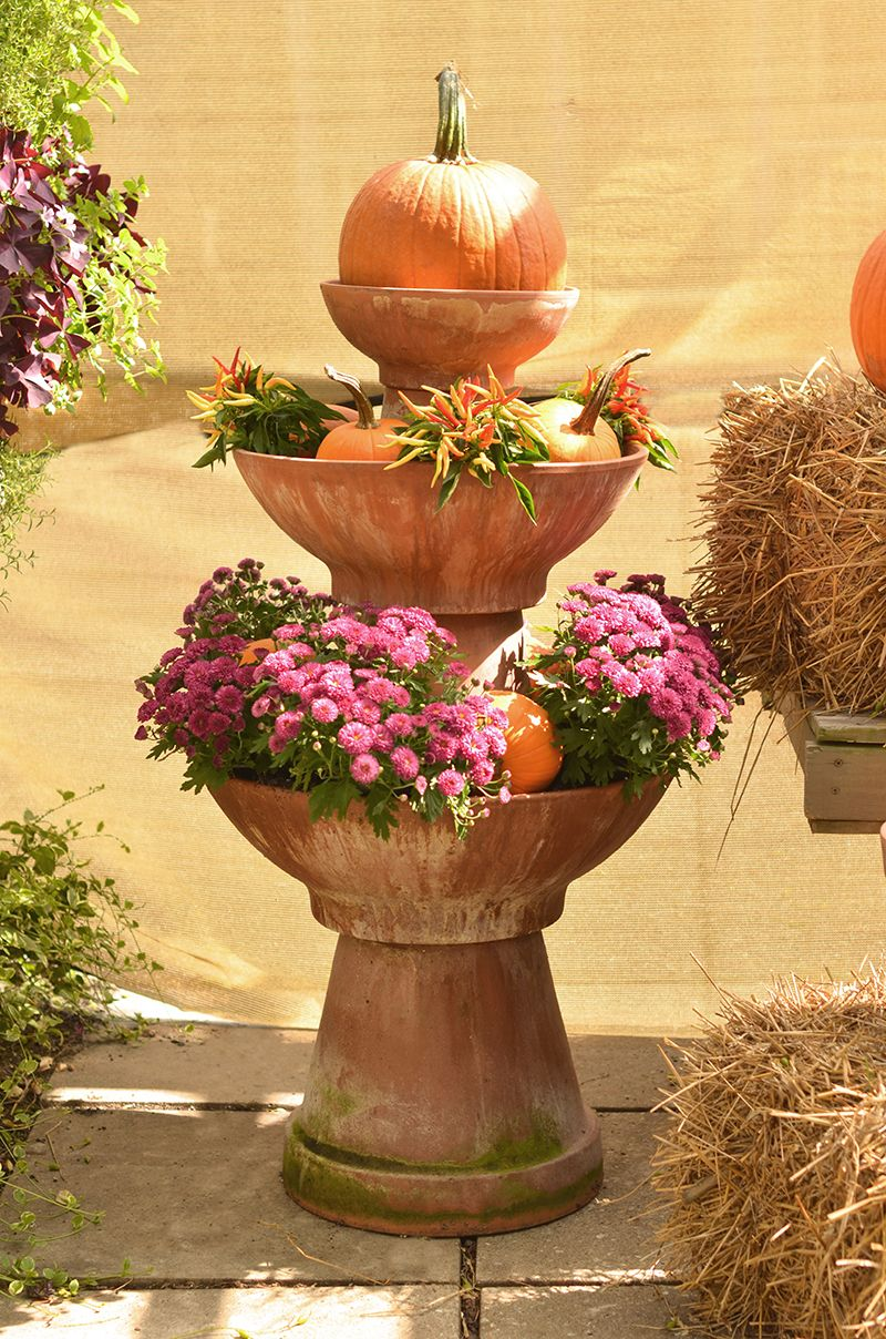 Make a bold fall look with mums in terracotta bowls and upside down ...