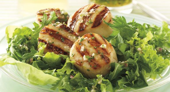 Grilled Scallop Salad with Citrus Vinaigrette