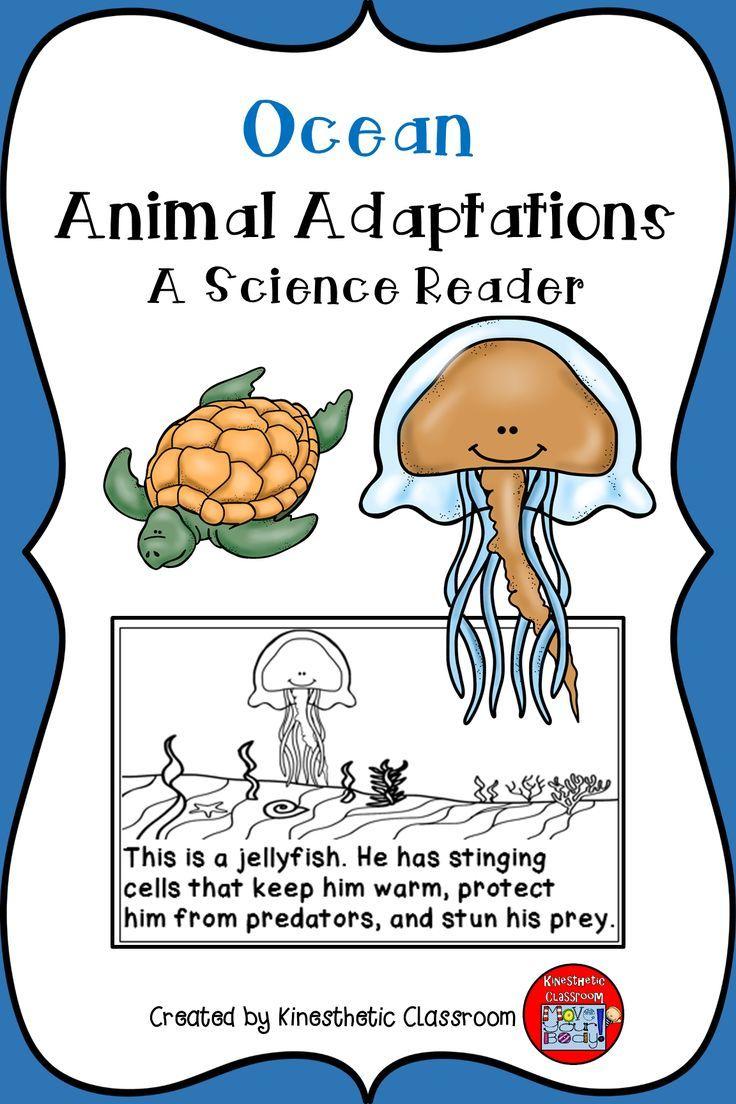 Ocean Animal Adaptations A Science Reader Animal
