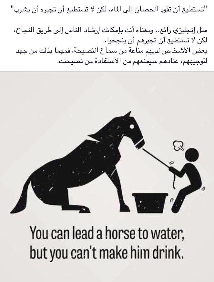 مثل انجليزي Horses Memes Words