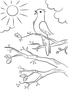 Ausmalbild Fruhling Singender Vogel Ausmalbilder Fruhling Ausmalbilder Ausmalen