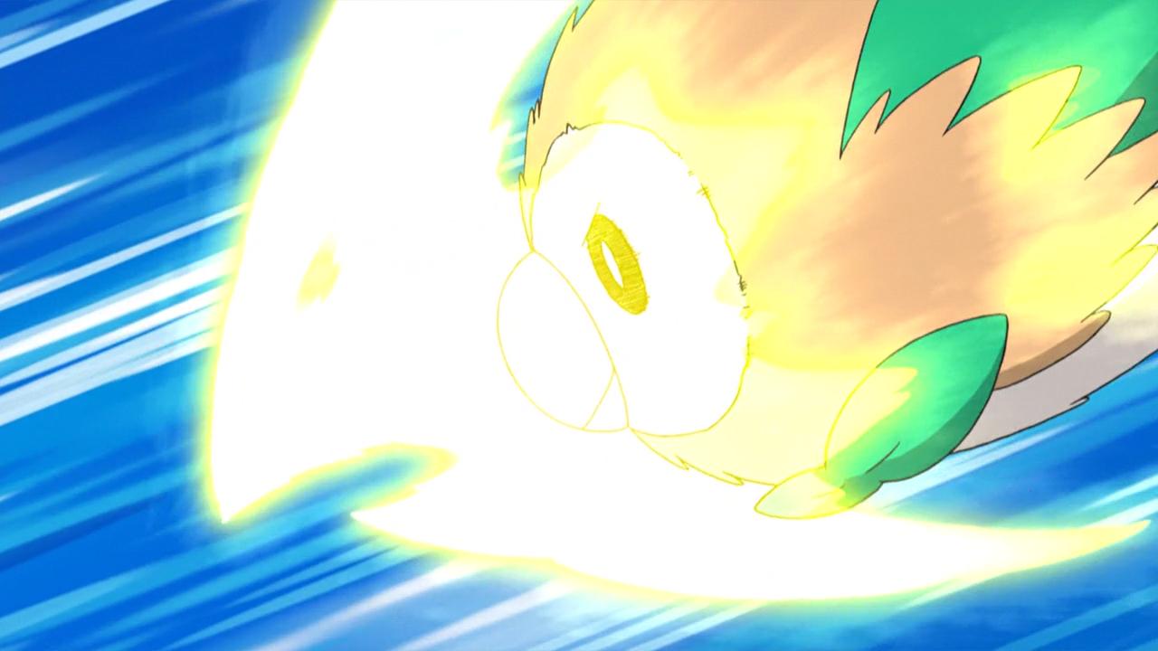 File Ash Rowlet Peck Png Epic Pokemon Pinterest