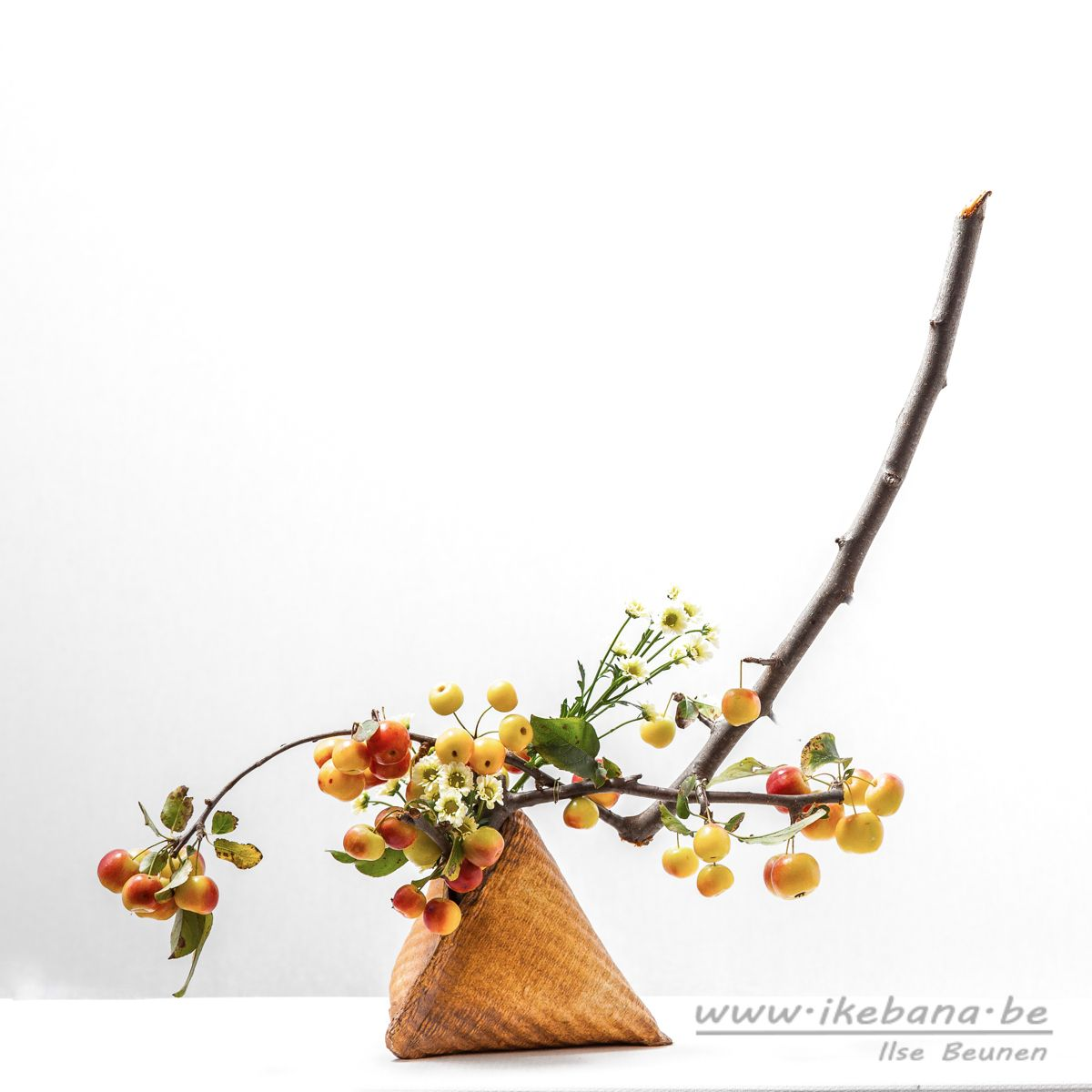 Sogetsu ikebana arrangement with fruit bearing branches