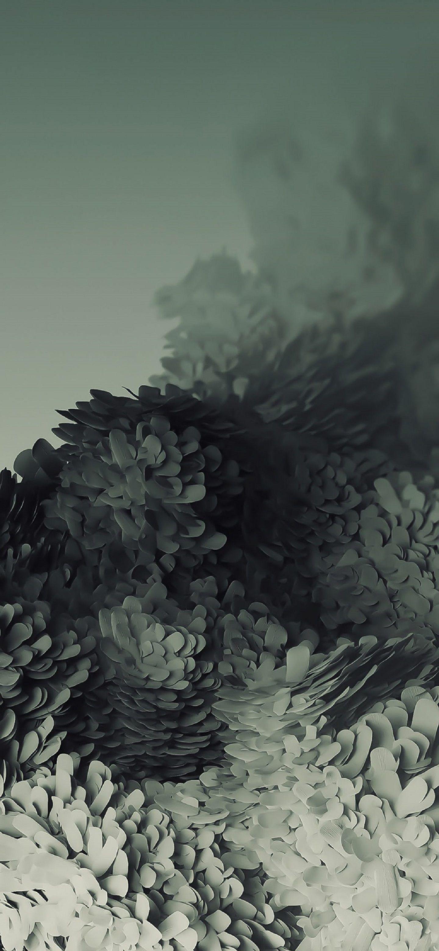 Samsung Galaxy S20 Wallpapers trong 2020 Hình nền, Nghệ