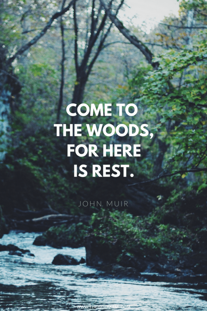 15 Beautiful Quotes about Nature and Wilderness to inspire