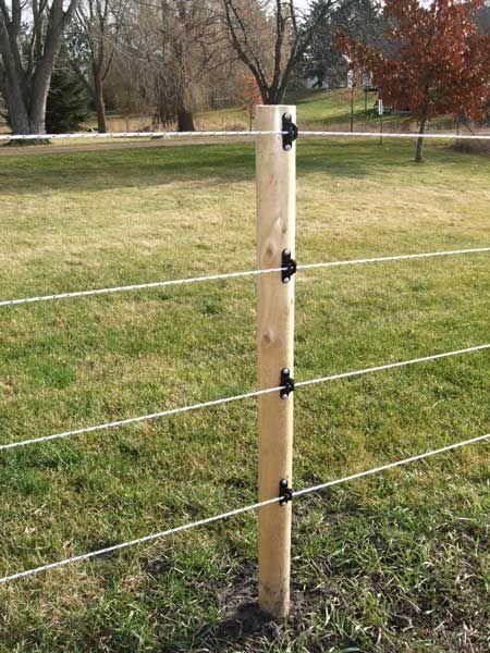 Electrobraid Fence Horses Horse Fencing Pasture