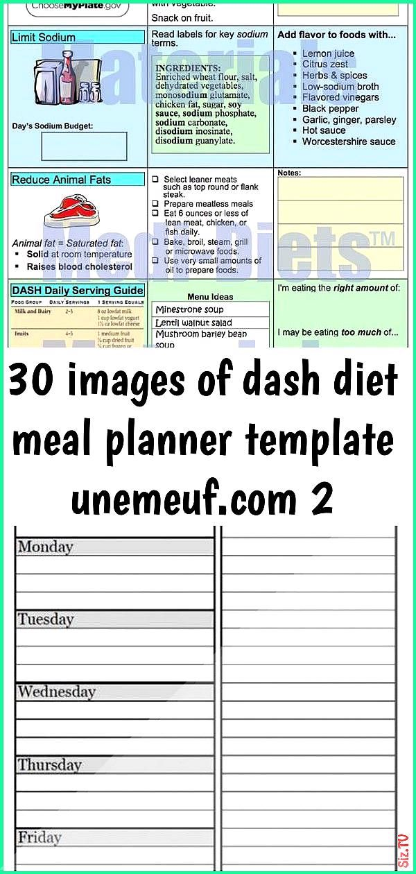30 images of dash diet meal planner template unemeuf 2 30 images of dash diet meal planner template...