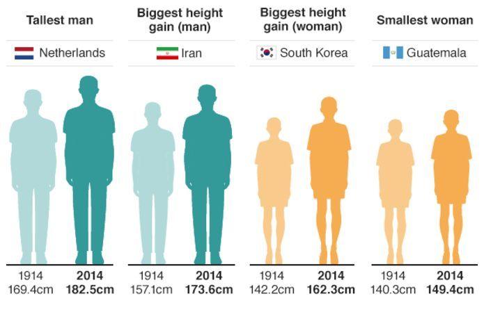 Dutch men revealed as worlds tallest | Tall guys, Average