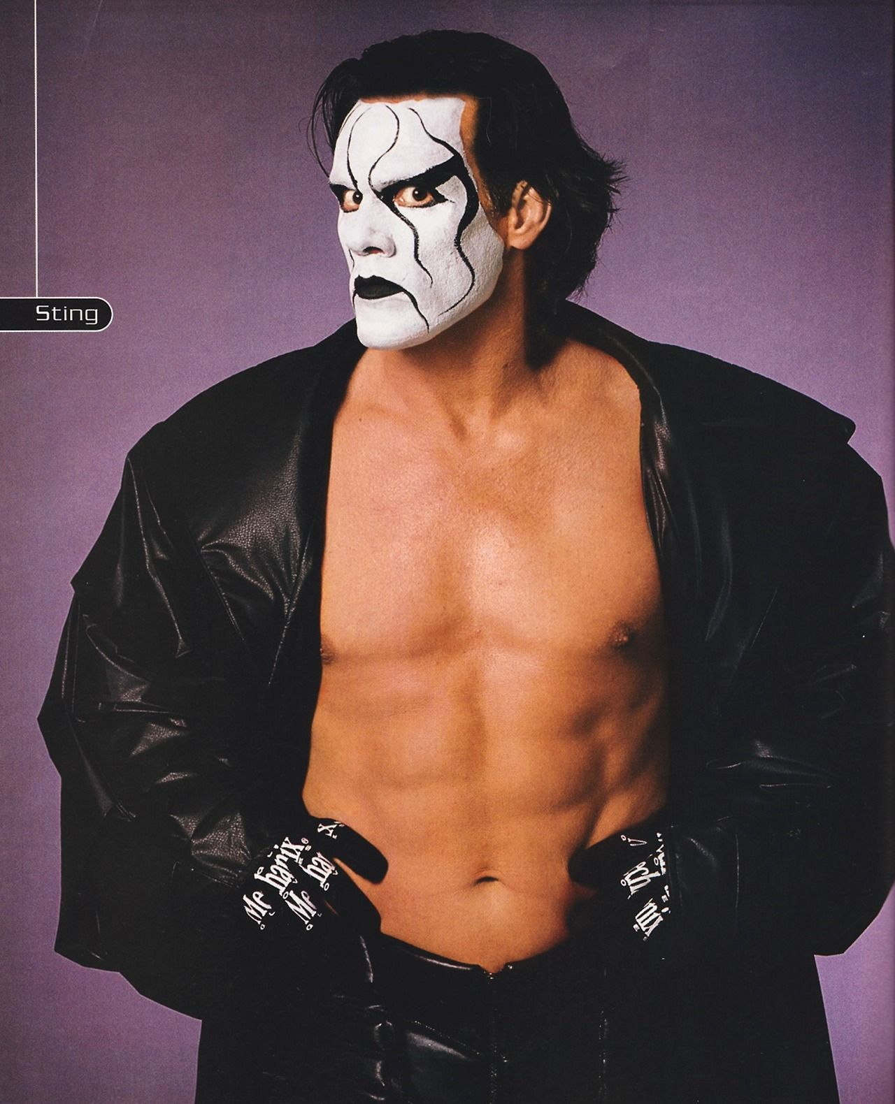 Sting Reference | Sting vs Undertaker Sequential Art