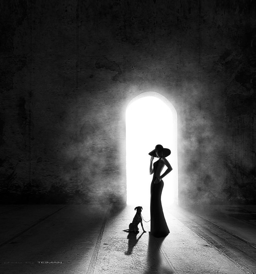 images about silhouette photography on pinterest   big love        images about silhouette photography on pinterest   big love  summer photos and black window frames