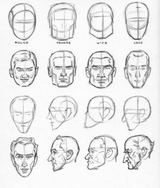 Pin by Jason Cole on head drawing | Pinterest | Andrew loomis ...