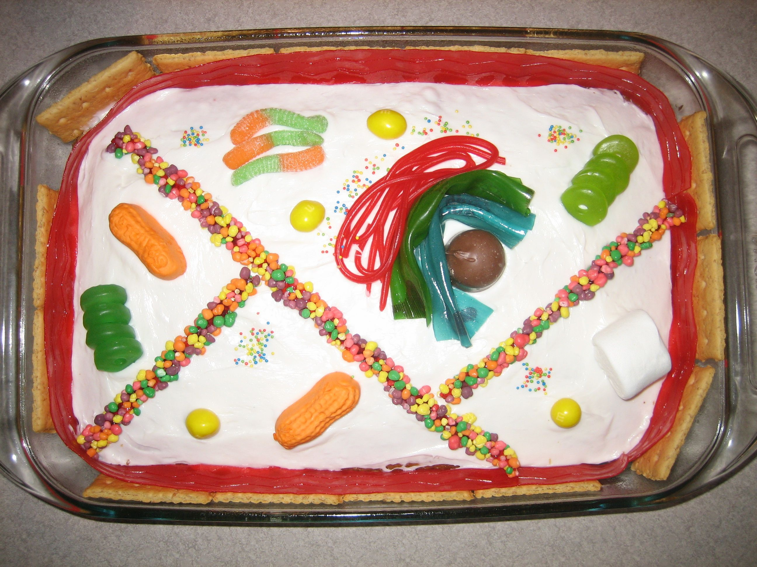 Edible plant cell- for the next time I have to do this ...
