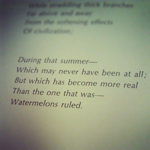 From The Poem Reflections On A Gift Of Watermelon Pickle Received