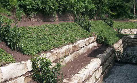 Hanggarten  Baumknospen  Garten Garten am hang und