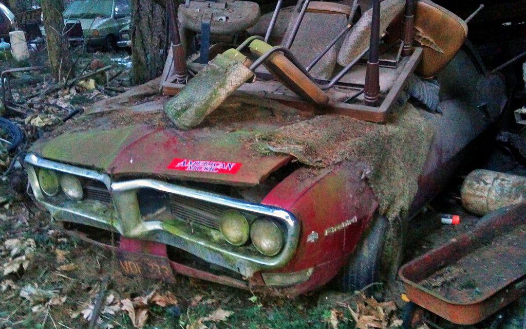 Lean-To Find: 1968 Pontiac Firebird - http://barnfinds.com/lean-to-find-1968-pontiac-firebird/