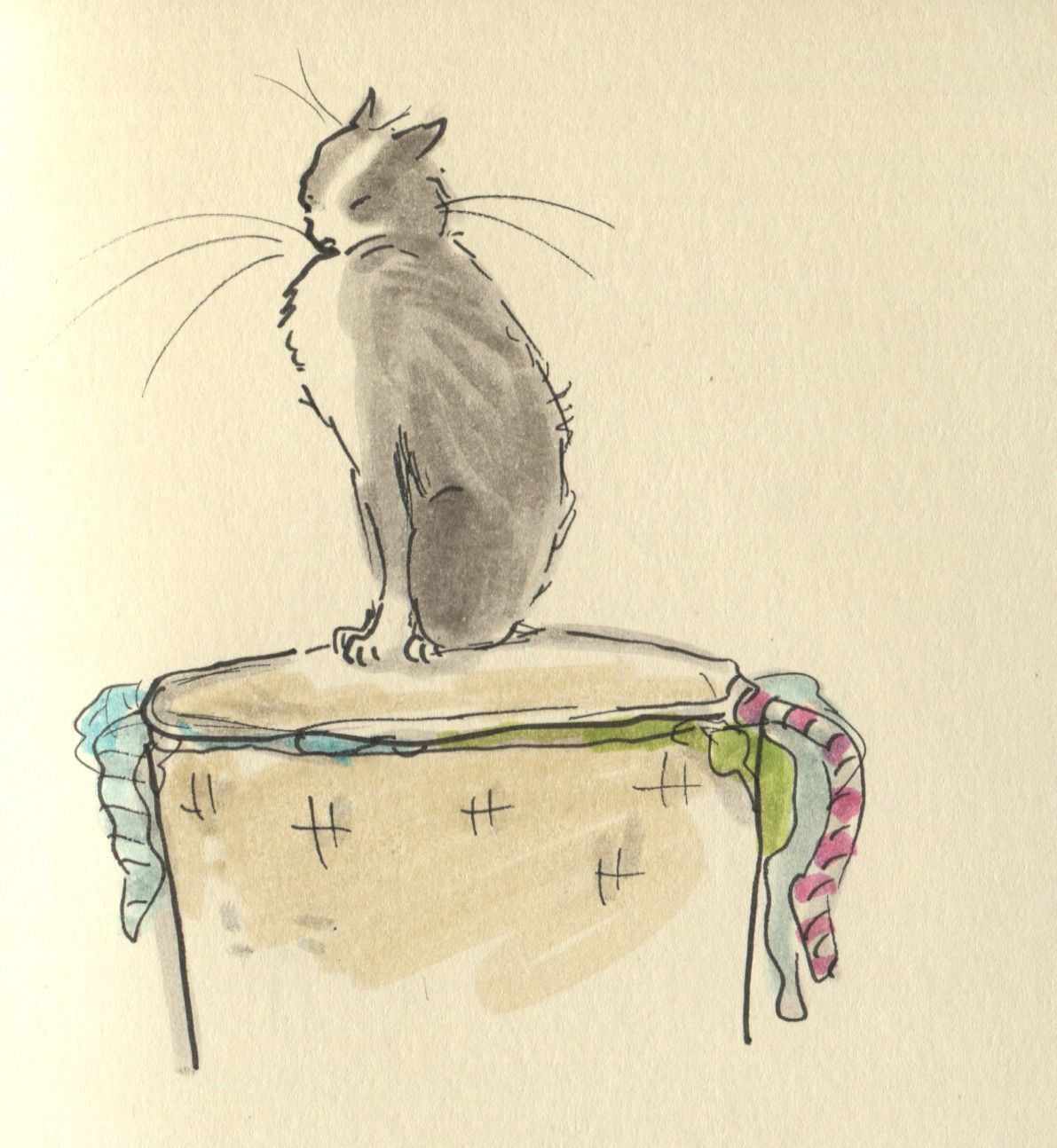 Out of order: Can't do any washing, the cat told me to have the day off…