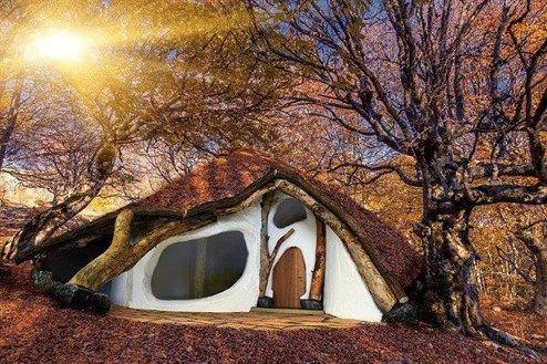 der k rntner bauk nstler wolfgang lackner will mit seinem einbaumhaus gegen den klassischen. Black Bedroom Furniture Sets. Home Design Ideas