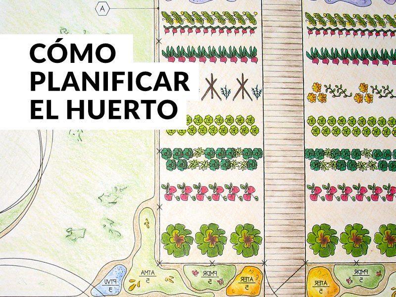 Plantea Blog  Cómo planificar el huerto is part of Garden veggies - Planificar el huerto puede parecer complicado (hay que tener muchas cosas en cuenta), en este post te damos las claves esenciales para planificar el huerto