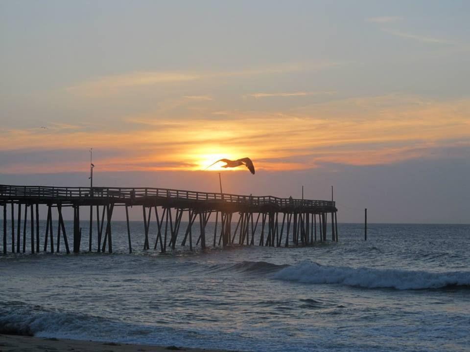 """Photo submitted by Lori M.- """"Avon Pier. It was a total accident that I caught the sea gull right in front of the sun! :)"""""""
