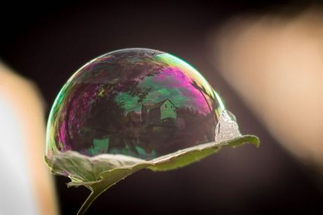 Life cradled in a bubble by Michael Higgins