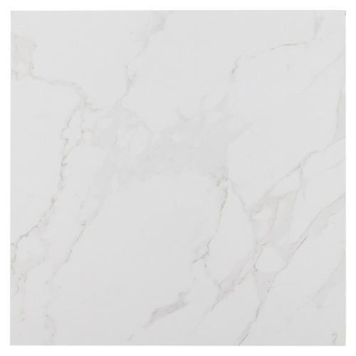 Carrara Polished Porcelain Tile 12 X 912500305