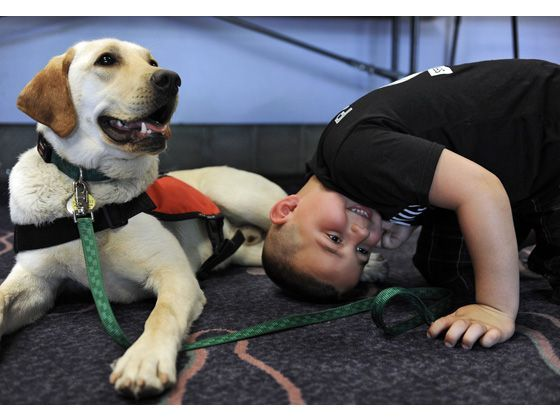 Many Autistic Kids Do So Much Better When Their Four Legged Pal Is