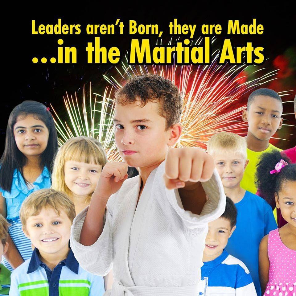 Family Taekwondo Plus in 2020 World taekwondo, Taekwondo