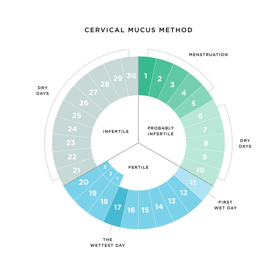 third image of Cervical Mucus Is Responsible For Several Important Jobs with Cervical Mucus is responsible for several important jobs ...