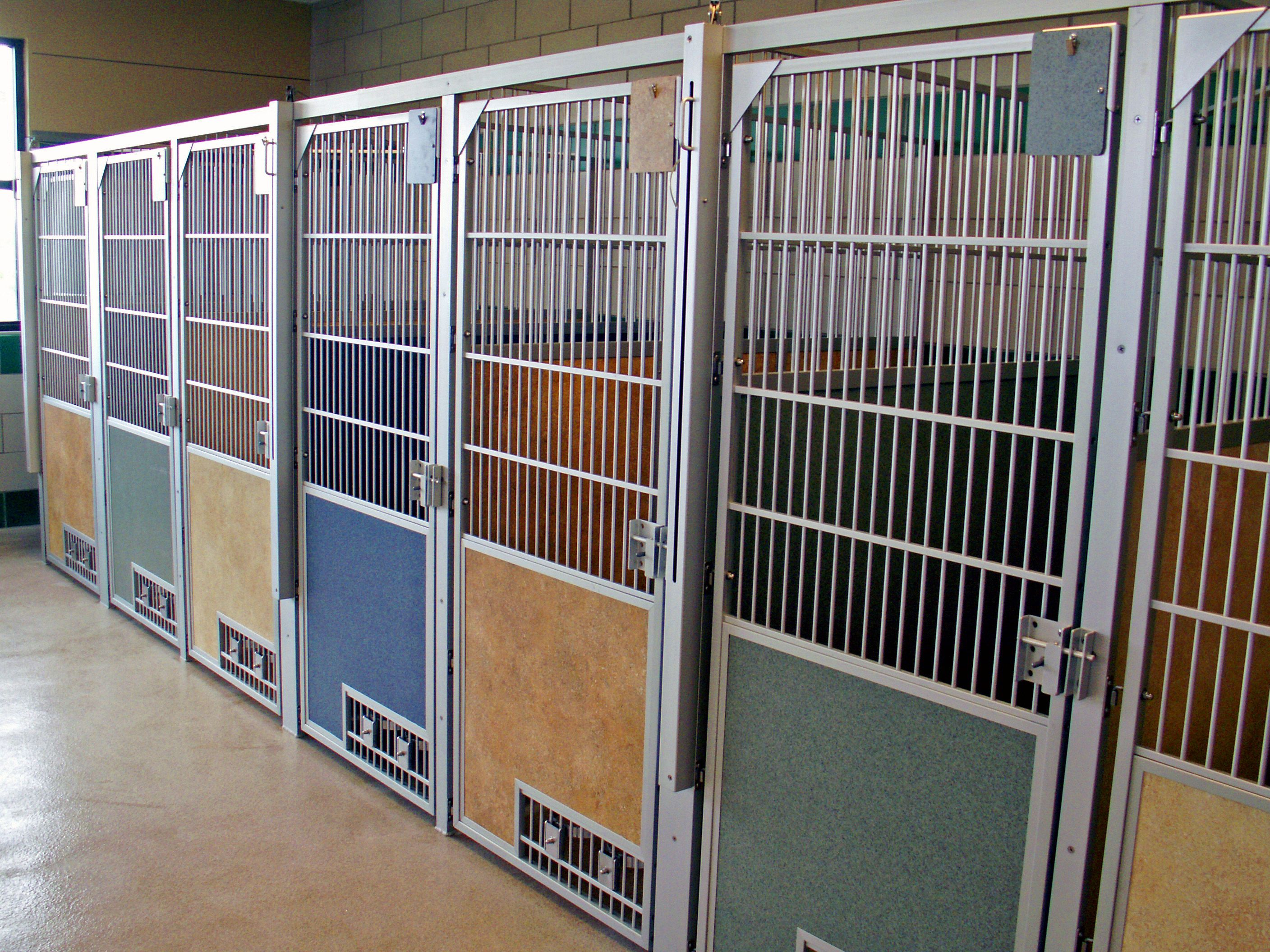 Attractive Dog Kennels With Multi Colored Privacy Panels At Weld