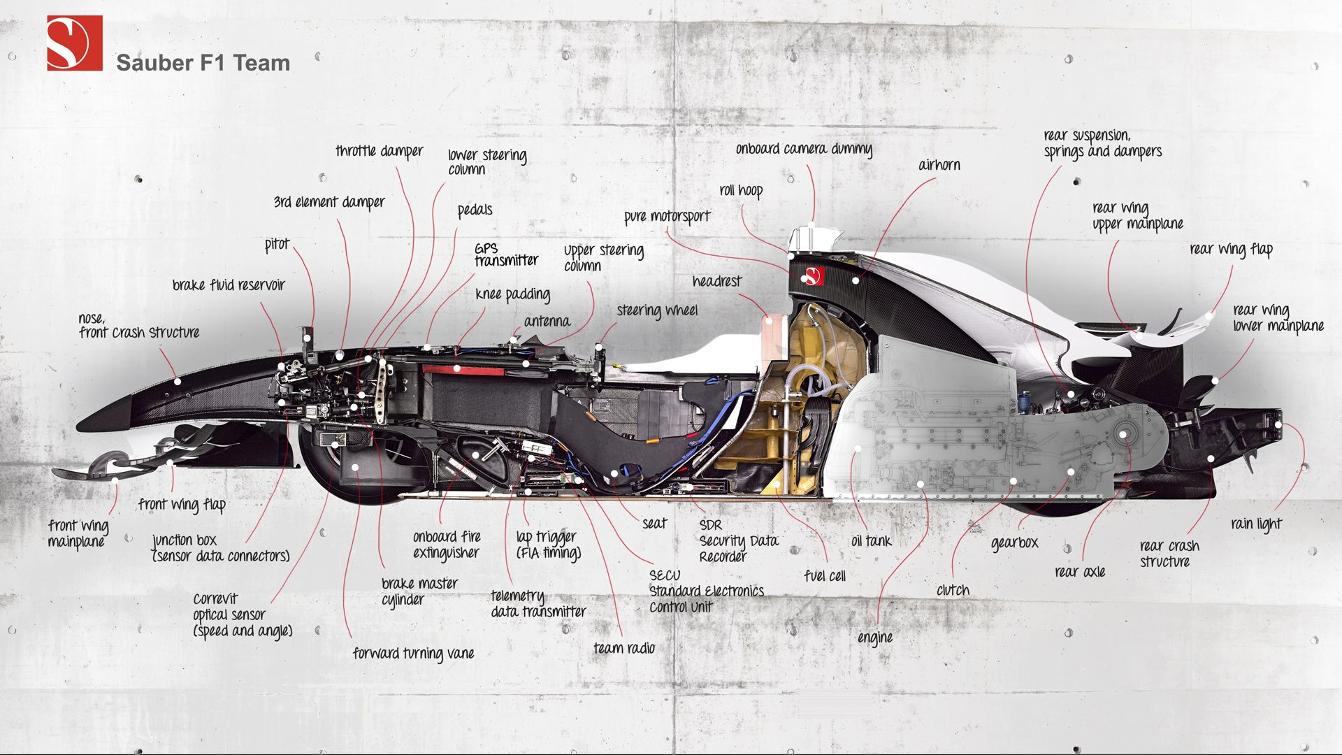 hight resolution of cross section of sauber f1car