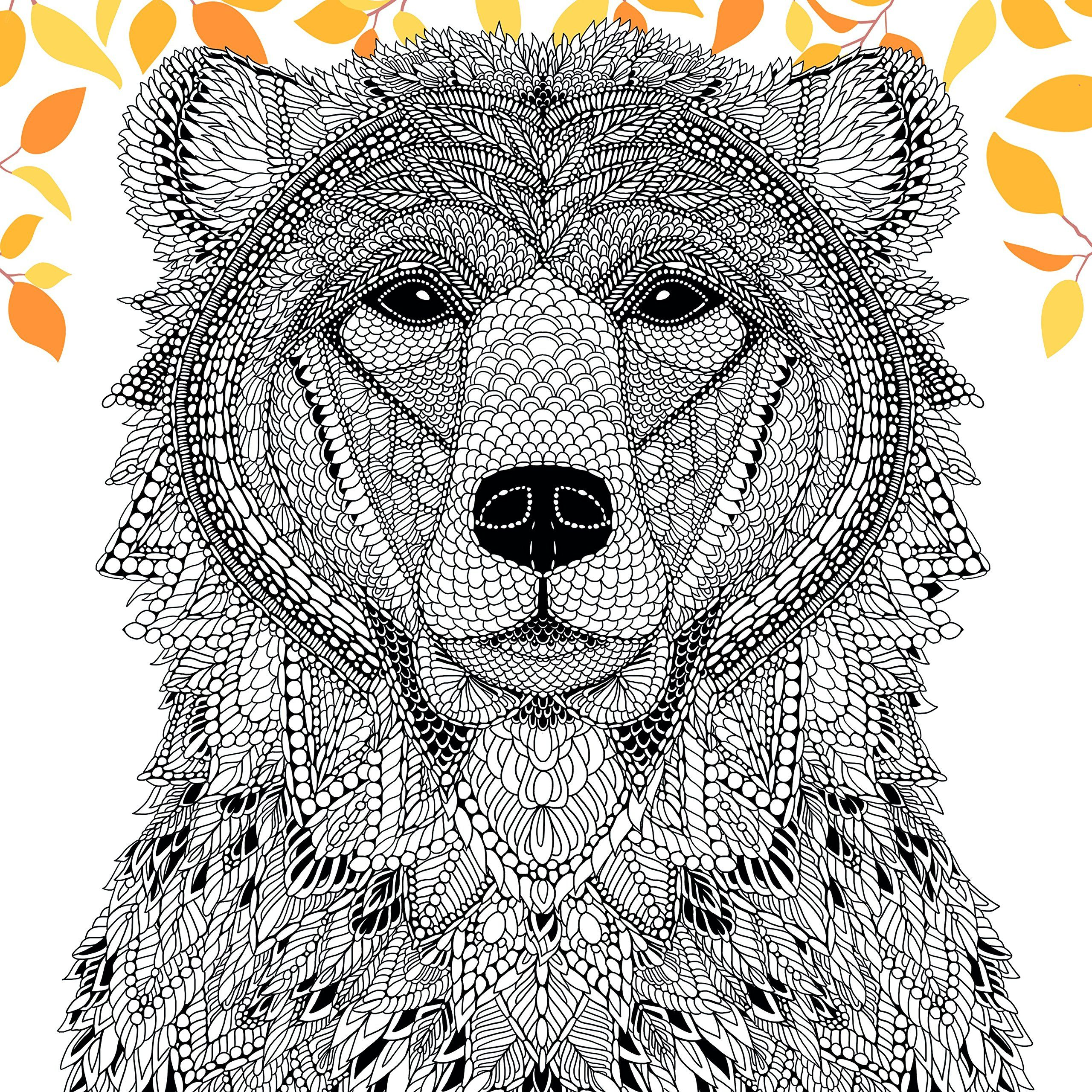 The Menagerie Animal Portraits To Colour Amazoncouk Richard Merritt Adult ColoringColoring
