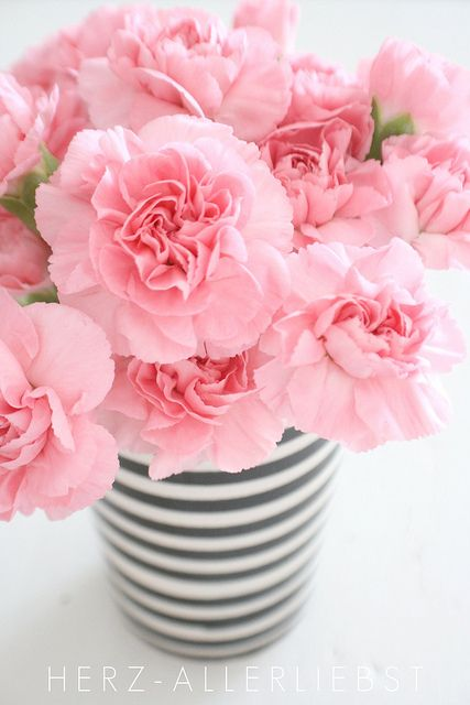 Love the soft pink florals with the black and white stripe vase. Matching the French theme. & Carnation | home decor | Flowers Pink carnations Pink flowers