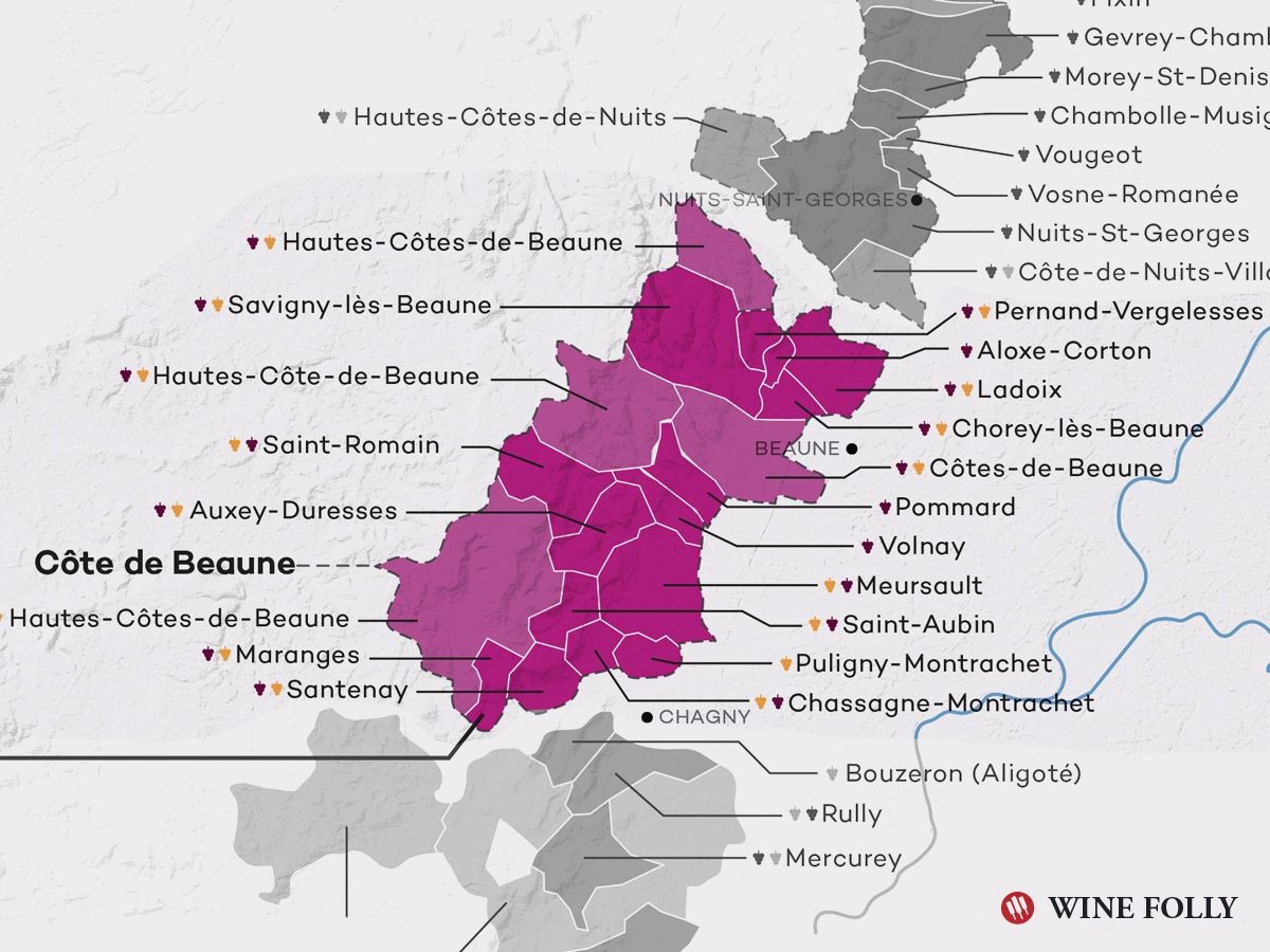 A Simple Guide To Burgundy Wine With Maps Wine Folly Wine Folly Burgundy Wine Burgundy Wine Map