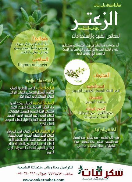 ورق الزعتر يساعد في علاج الربو الروماتيزم و ضعف الامعاء وبمزجه مع العسل لإزالة البلغم وقطع ورق الزعتر البخر وتقوية Health Diet Natural Remedies Remedies