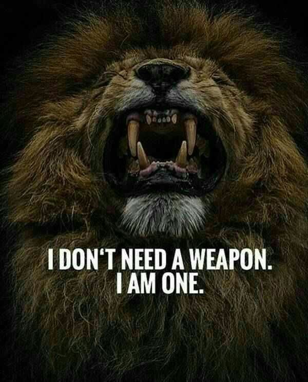 Quotes Image By Tanya Abc Warrior Quotes Lion Quotes Short