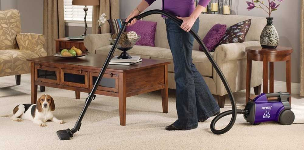 The Best Vacuum For Pet Hair Of 2020 Pet Hair Vacuum Cleaner Best Vacuum Best Pet Hair Vacuum