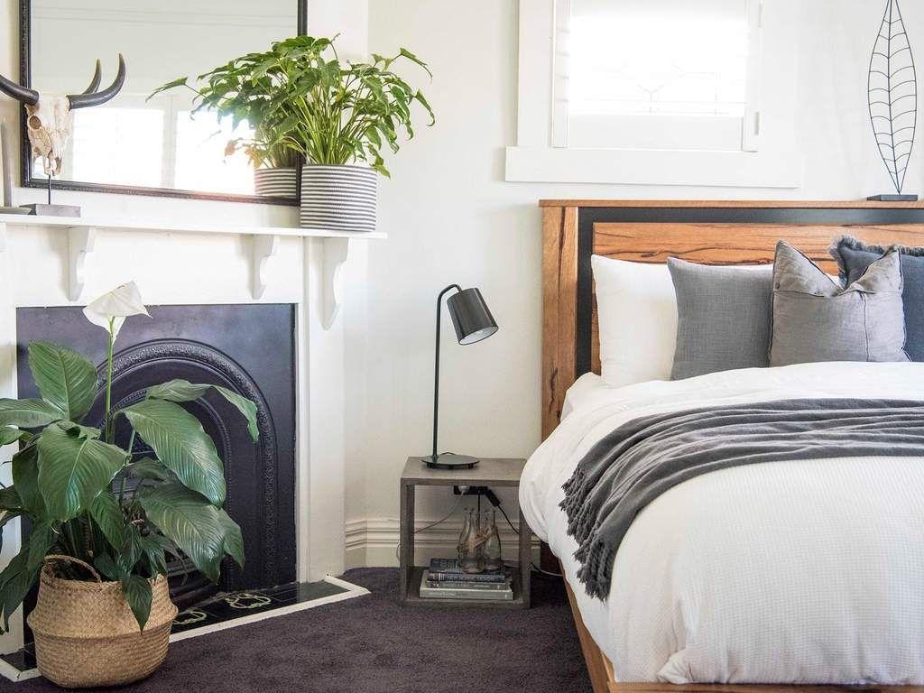 Dormir avec une plante dans la chambre est ce vraiment dangereux plante interieur en 2019 - Plante dans la chambre ...