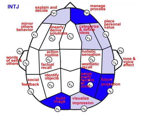intj brain | Mbti, Intj, Brain mapping