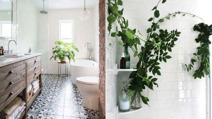 Tips för att lyckas med växttrenden | Residence