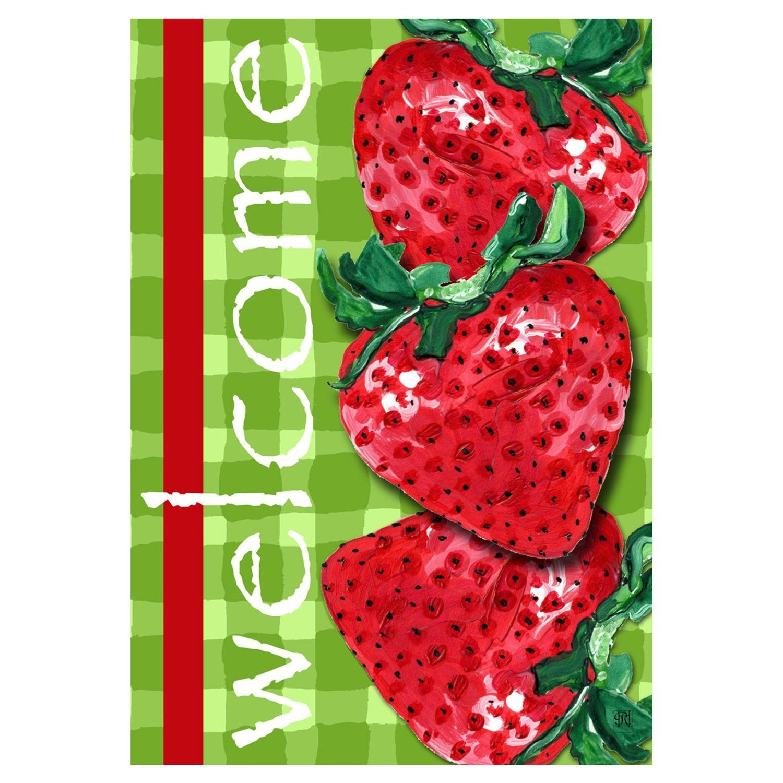 Amazon.com : Custom Decor Spring Garden Flag Welcome Strawberry ...
