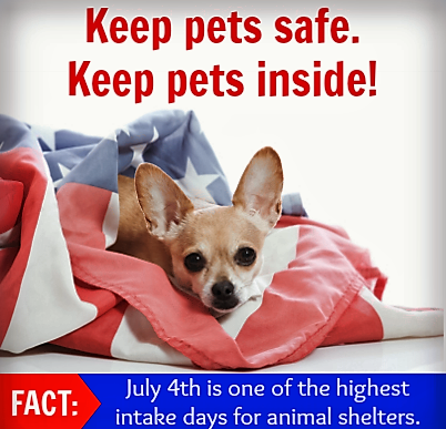 The Sounds Of Safety Pet Safety Pet Day Fur Babies