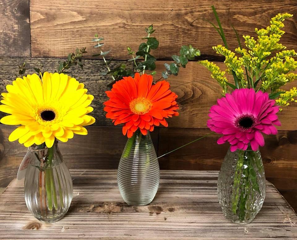 Superb Gerbs Flowersplusstreator Gerbs Flower Tropical Floral Arrangements Flower Delivery Order Flowers Online