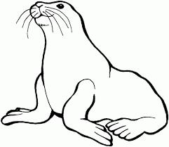 Image Result For Black And White Clip Art Of Seal Clip Art Boyama Sayfalari Balik