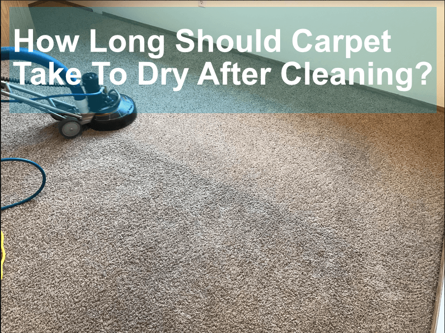 Best Of 15 Pics Of How Long Does Carpet Need To Dry After Cleaning And Description In 2020 Cleaning Carpet Dried