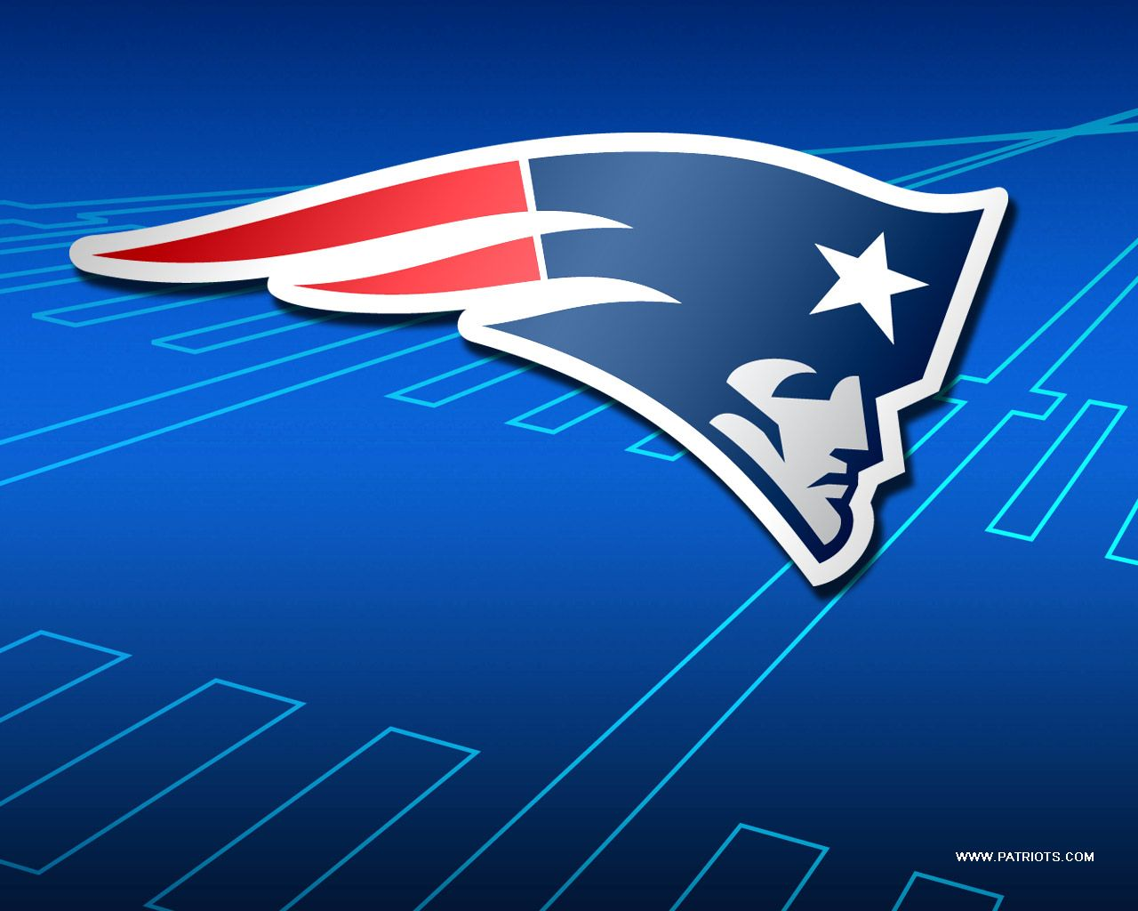 Love My Pats Fondo