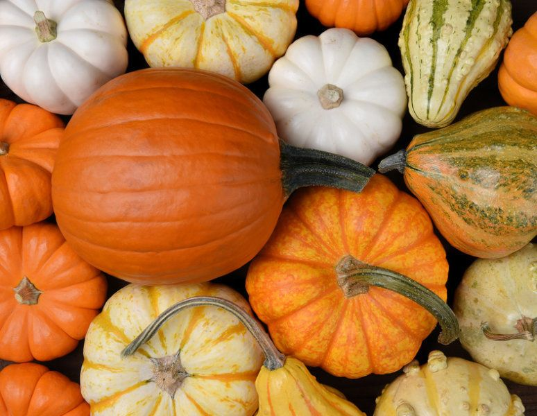 For some, pumpkins conjure carved Halloween decorations, but for - natural halloween decorations